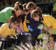Za djecu i nastavnike: Obrazovanje o upravljanju otpadom