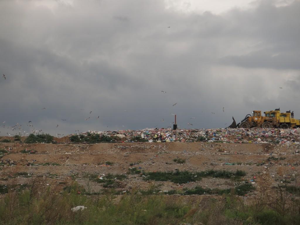 Sanitarna kada na podgoričkoj deponiji (Foto:OZON tim)