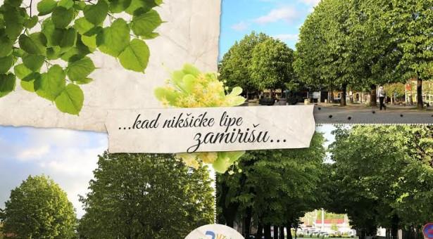 """,Ozon"""" na Dan ekološke države pozvao Skupštinu, Vladu i predsjednika Crne Gore –"""