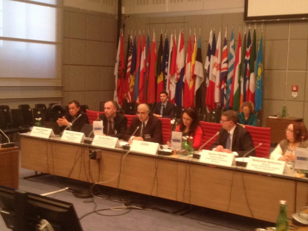 Detalj sa sesije u kojoj je učestvovao Aleksandar Perović (Foto: Srđan Ćetković)