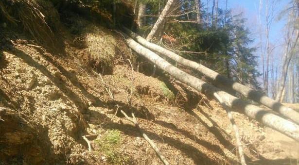 Devastacija životne sredine na planini Zeletin
