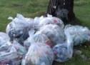 Volonterske akcije čišćenja Gorice, Skalina, Ribnice i Ćemovskog