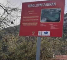 Krivolov u zoni strogog zabrana u NP Skadarsko jezero