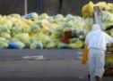 """,,Ozon"""" predložio Vladi :: Donijeti lokalne planove za upravljanje otpadom u kriznim situacijama"""